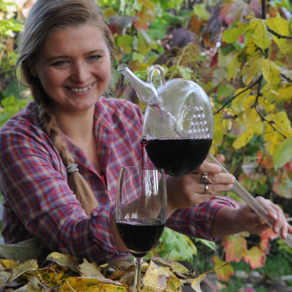 enoturystyka kurs winiarski